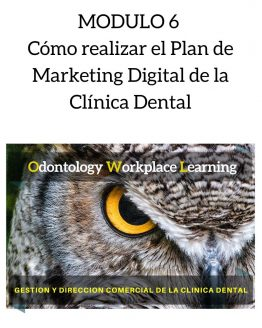 Cómo realizar el Plan de Marketing Digital de la Clínica Dental